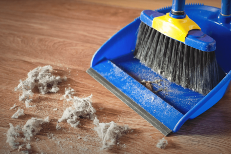 Why is my house so dusty? Most common reasons and solutions